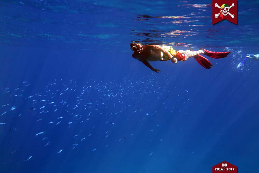 Snorkeller at the Similan Islands