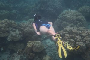 Our guest Ann, free diving like a mermaid